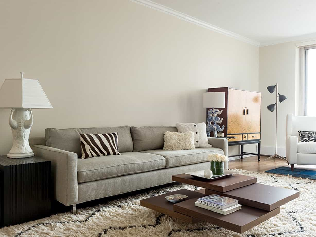 Featured Image of Cozy Living Room With Shag Area Rug And Geometric Coffee Table