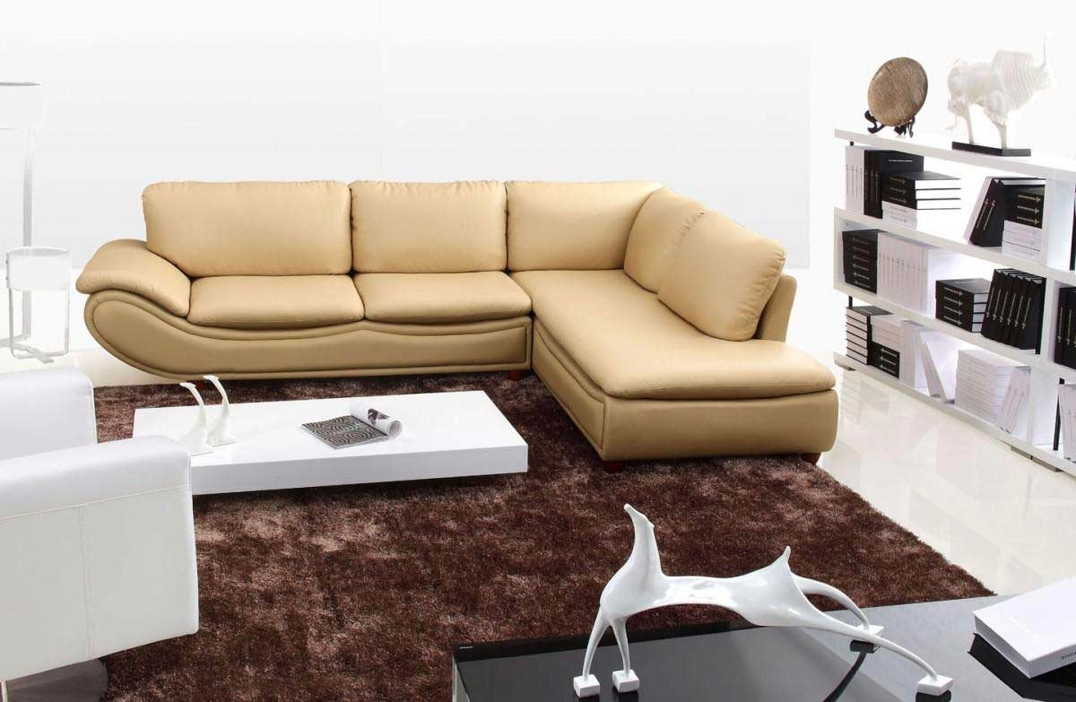 Cozy Sectional Sofas Contemporary Living Room Ideas Living Inside Cozy Sectional Sofas (Image 4 of 15)