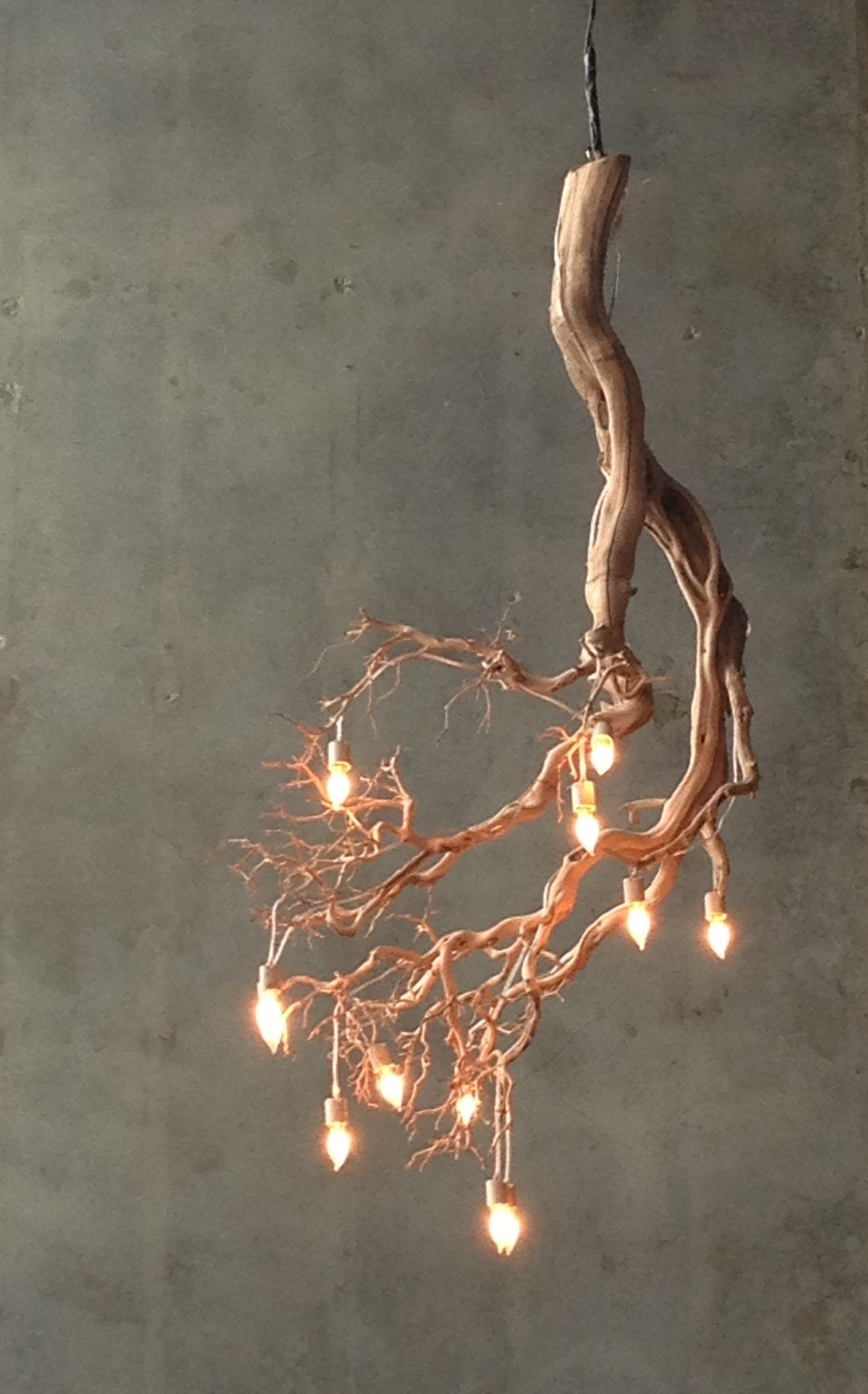 Design Find Branch Chandelier Jen Some And Then Some Pertaining To Branch Chandeliers (Image 3 of 15)