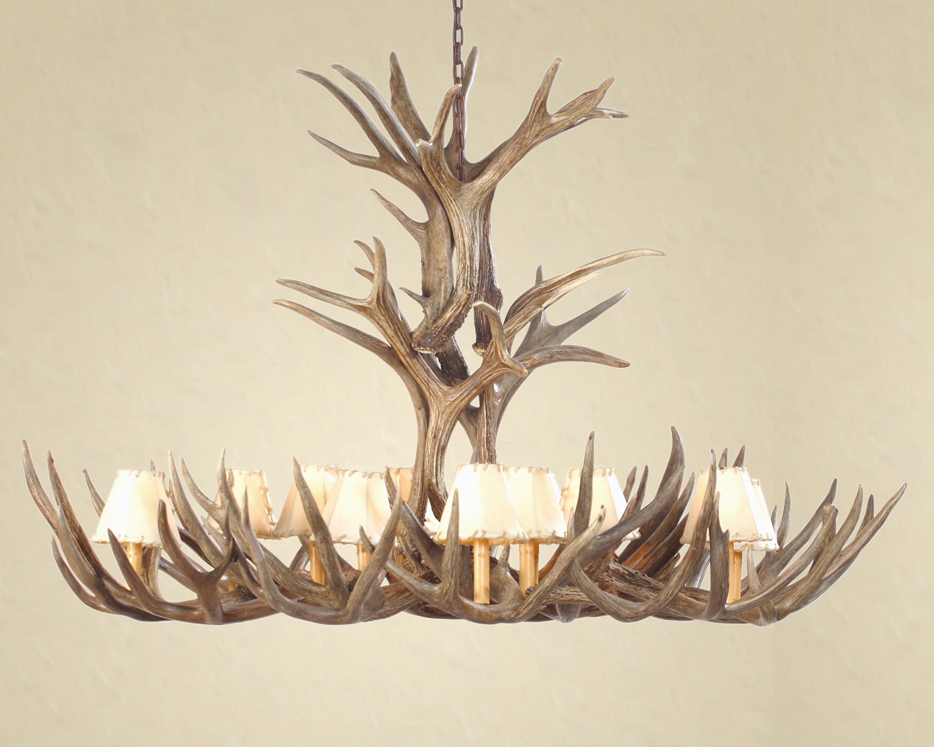 Essentials To Know Before You Buy An Antler Chandelier In White Antler Chandelier (Image 4 of 15)
