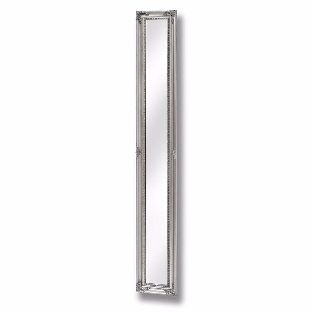 Full Length Wall Mirror Ebay Pertaining To Tall Narrow Mirror (Image 1 of 15)