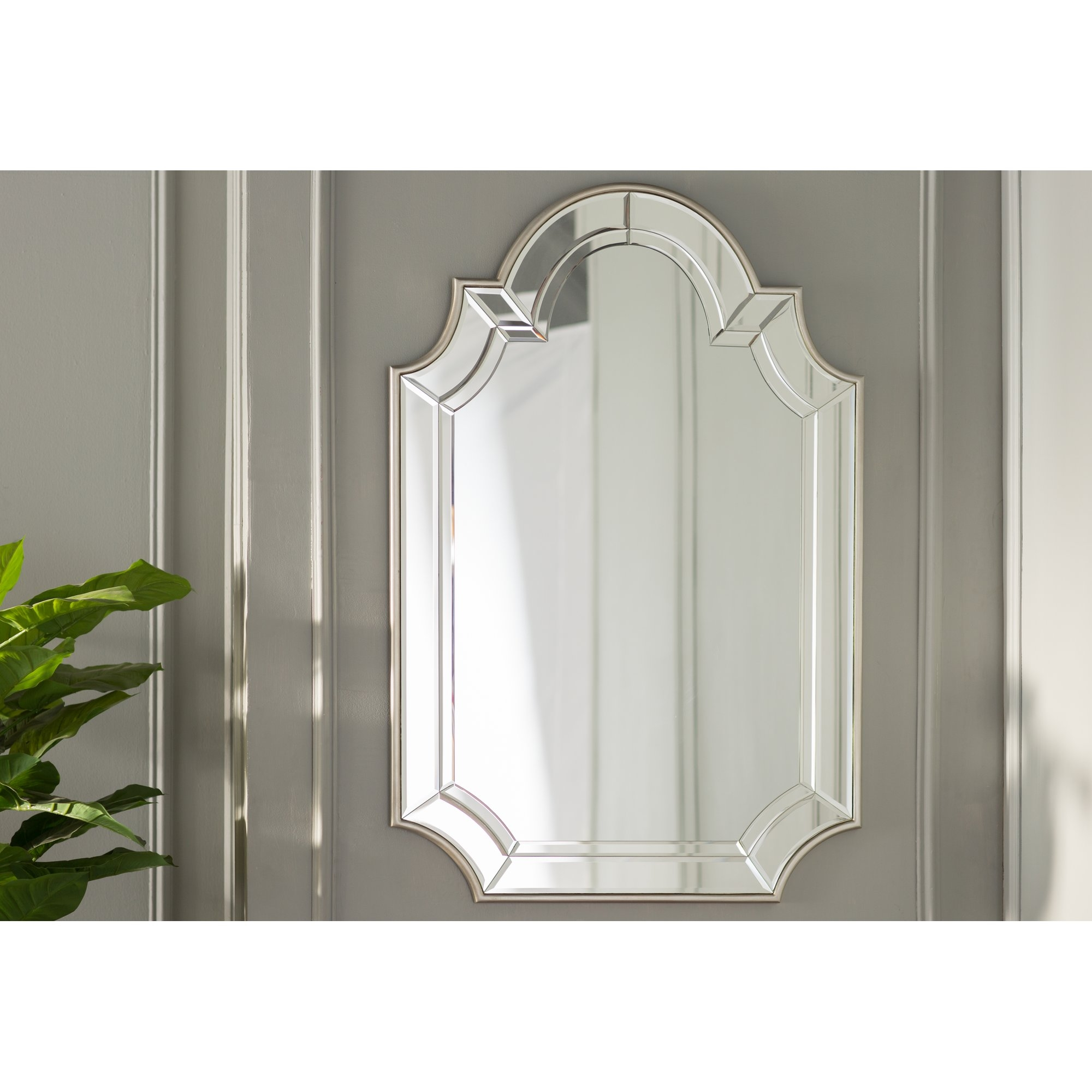 House Of Hampton Archcrowned Top Champagne Wall Mirror Reviews Inside Champagne Wall Mirror (View 8 of 15)