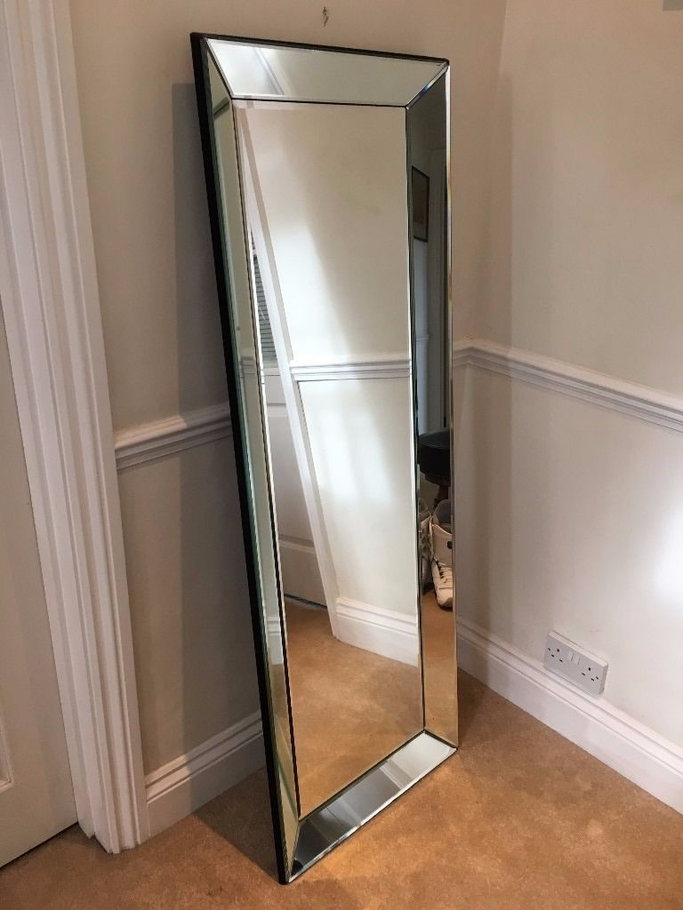Large Mirror Bevelled Edges Wall Mounted Or Free Standing In Inside Free Standing Long Mirror (Image 10 of 15)