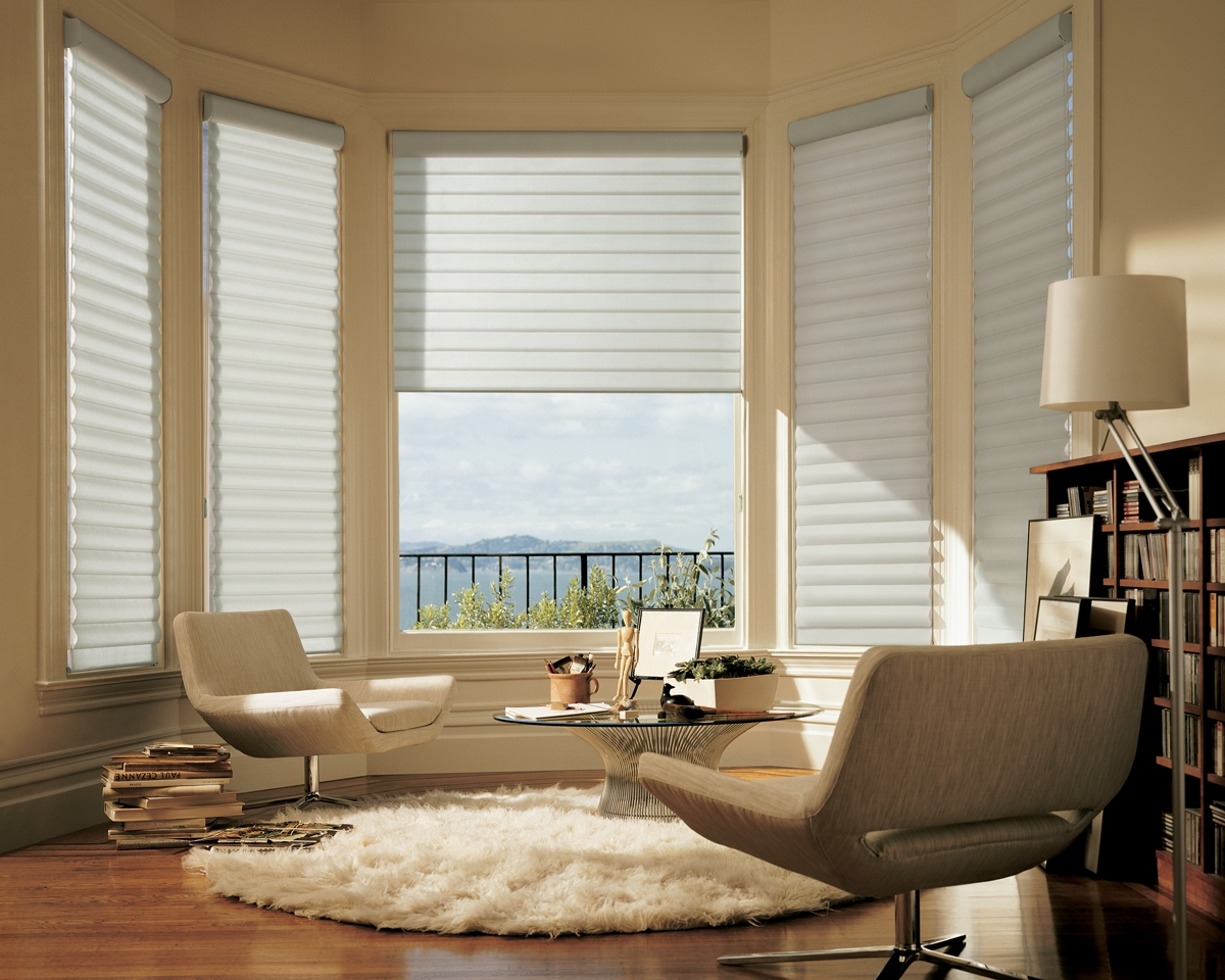 Living Room Bay Window Blinds Best Prices 2017 Inside Bay Window Blinds And Curtains (Image 15 of 15)