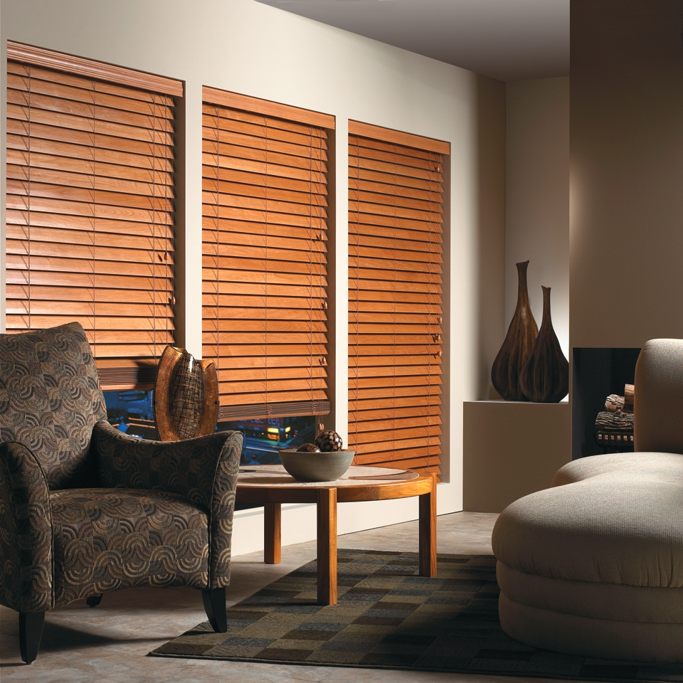living room with blinds 15 collection of front room blinds curtain ideas 13184