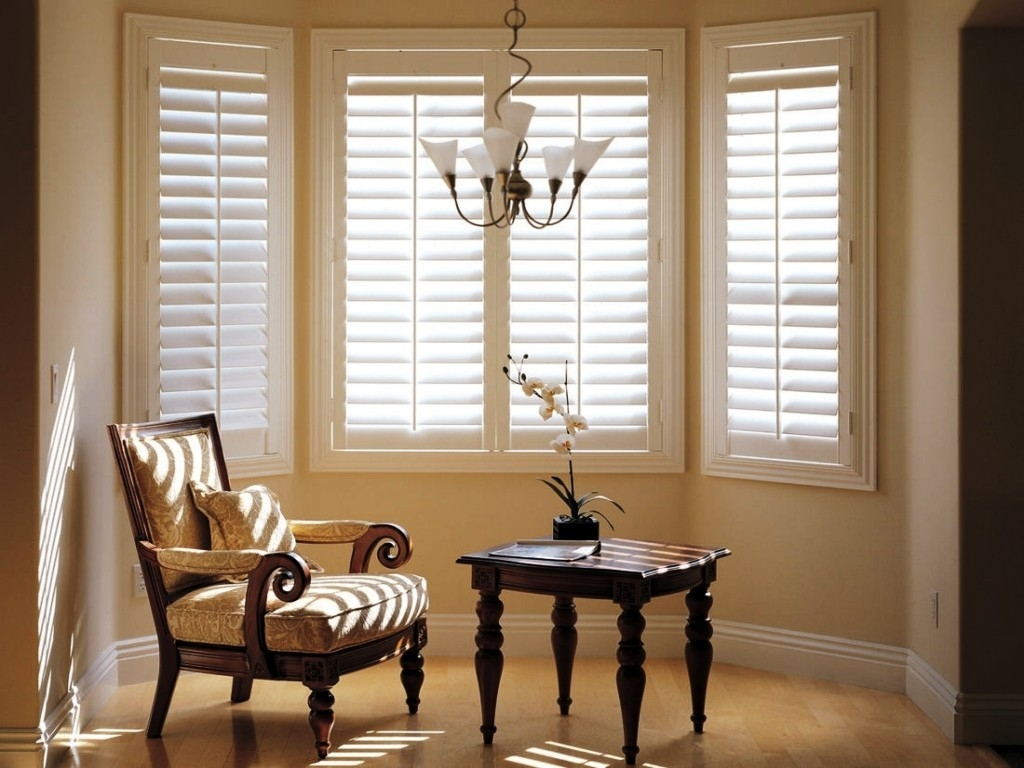 Materials Types Of Window Blinds In Front Room Blinds (View 2 of 15)