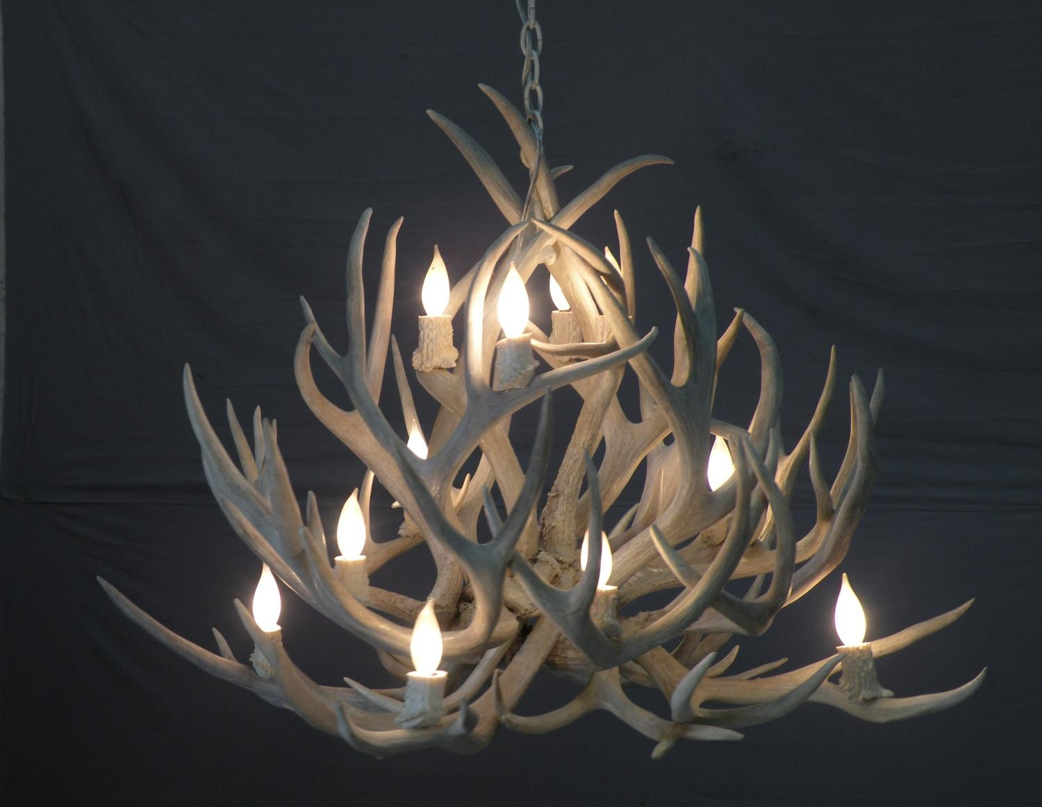 Modern Antler Decor Peak Antler Chandeliers Intended For Modern Antler Chandelier (Image 9 of 15)