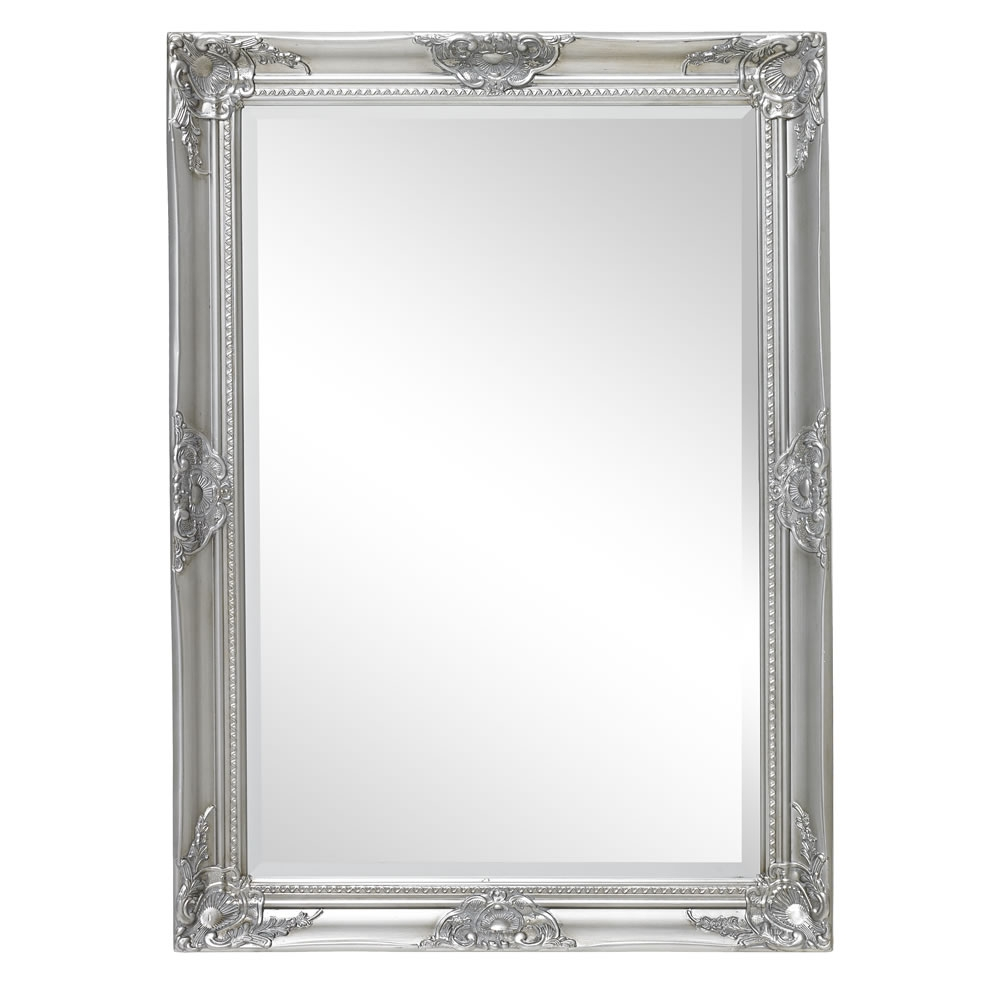 Pinterest The Worlds Catalogue Of Ideas Regarding Silver Baroque Mirror (Image 10 of 15)