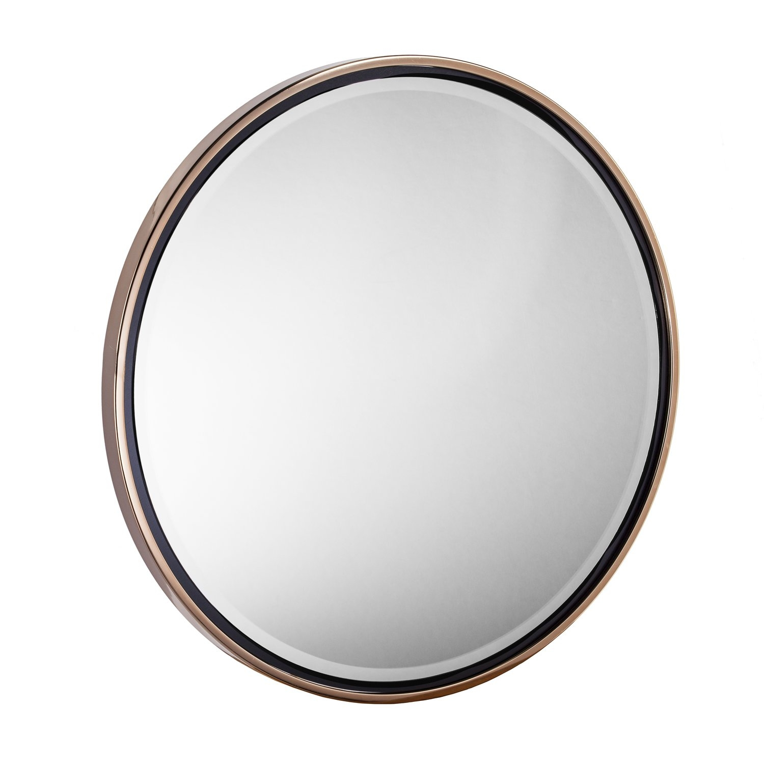 Willa Arlo Interiors Contemporary Round Wall Mirror Reviews Throughout Contemporary Round Mirror (View 6 of 15)