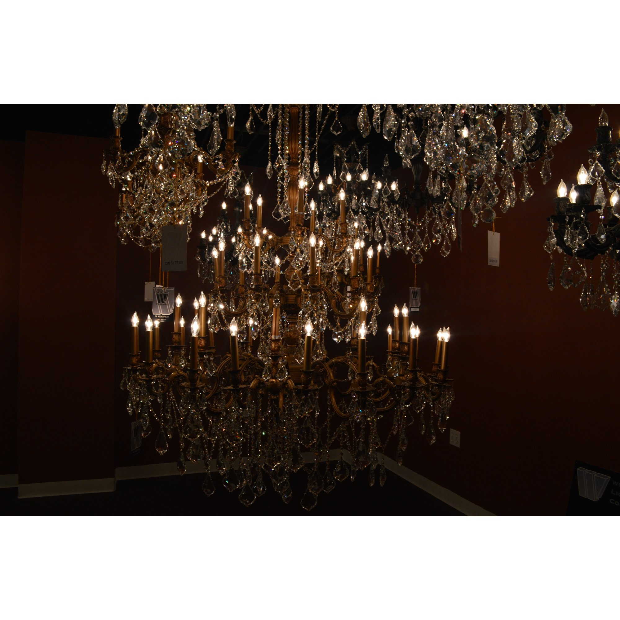 Worldwide Lighting Windsor 45 Light Crystal Chandelier Wayfair Throughout Crystal Branch Chandelier (Image 15 of 15)