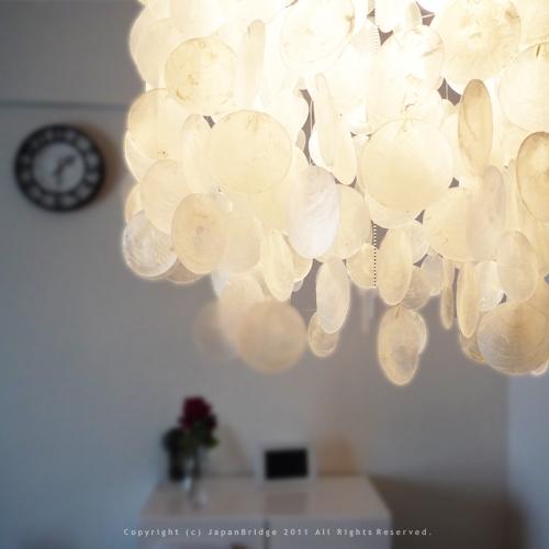 Amazing Brand New Shell Light Shades With Regard To Markdoyle Rakuten Global Market Capiz Shell Shade 1 Light (Image 1 of 25)