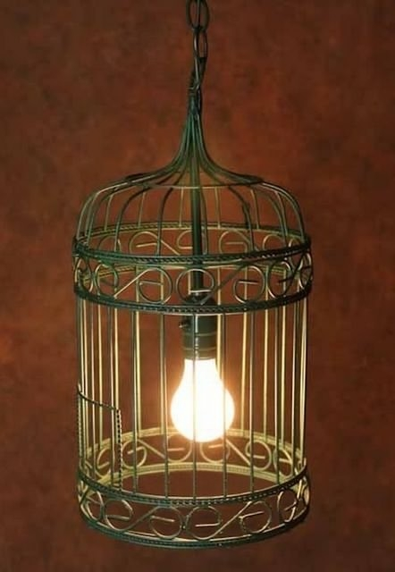 Amazing Favorite Birdcage Pendant Lights For Antique Birdcage Pendant Lighting In Painted Finish Contemporary (Image 1 of 25)