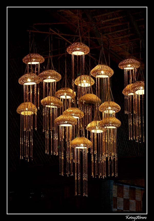 Amazing Favorite Jellyfish Inspired Pendant Lights With 19 Best Jellyfish Inspired Lamps Images On Pinterest (View 13 of 25)