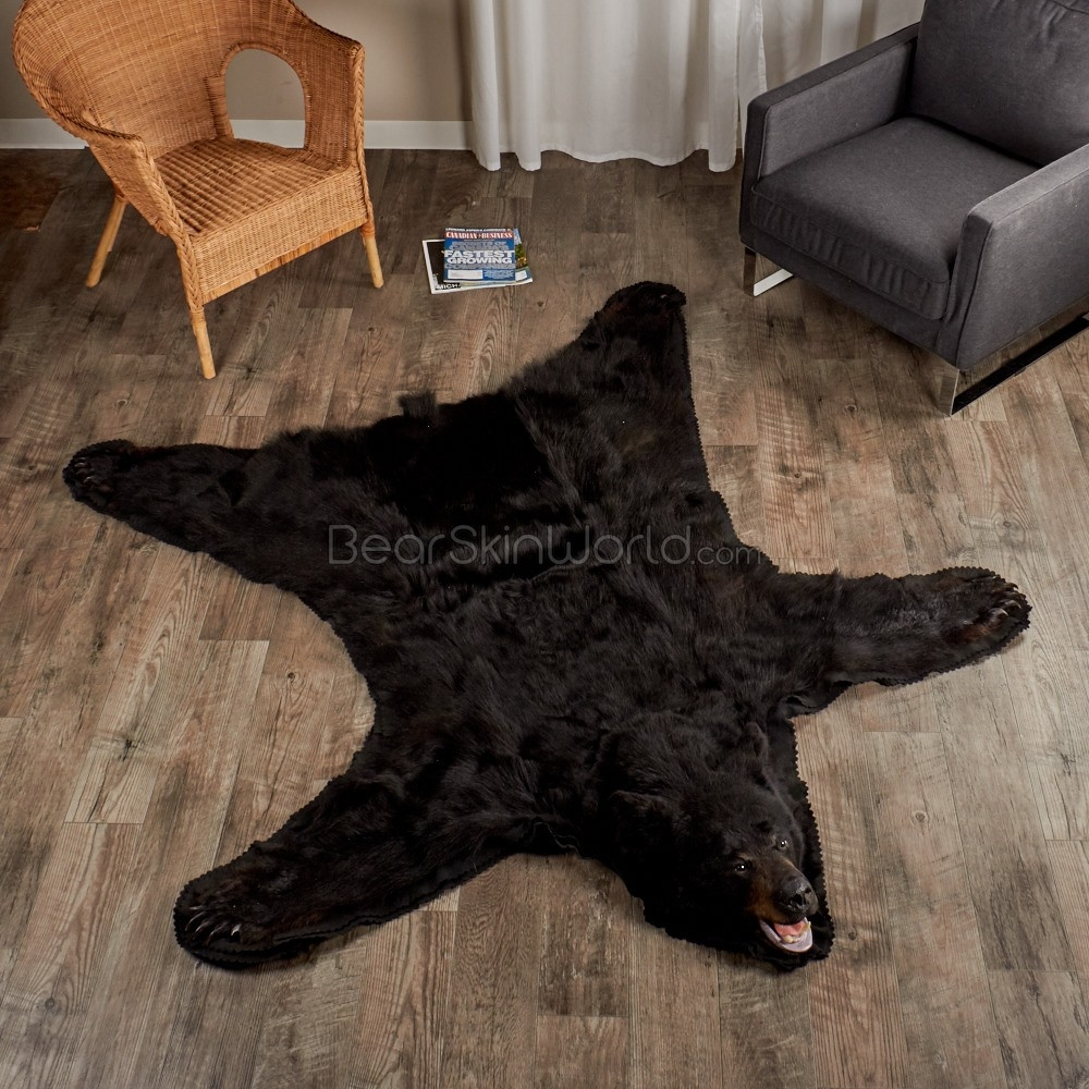 Bear Skin Guides Bear Skin World For Teddy Bear Rugs (Image 4 of 15)