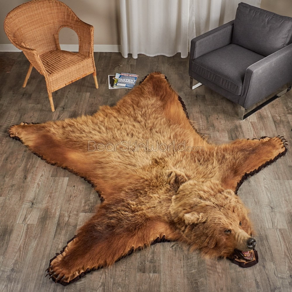 Bear Skin Guides Bear Skin World Intended For Teddy Bear Rugs (Image 5 of 15)