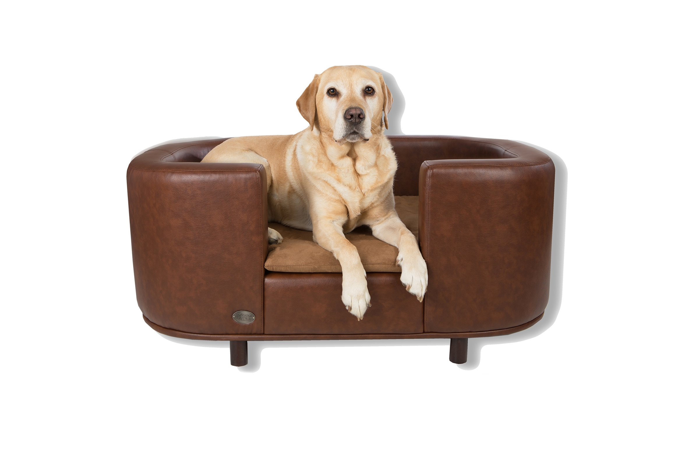 Beautiful Dog Sofa Beds Pictures Design Ideas Collections Throughout Dog Sofas And Chairs (Image 1 of 15)
