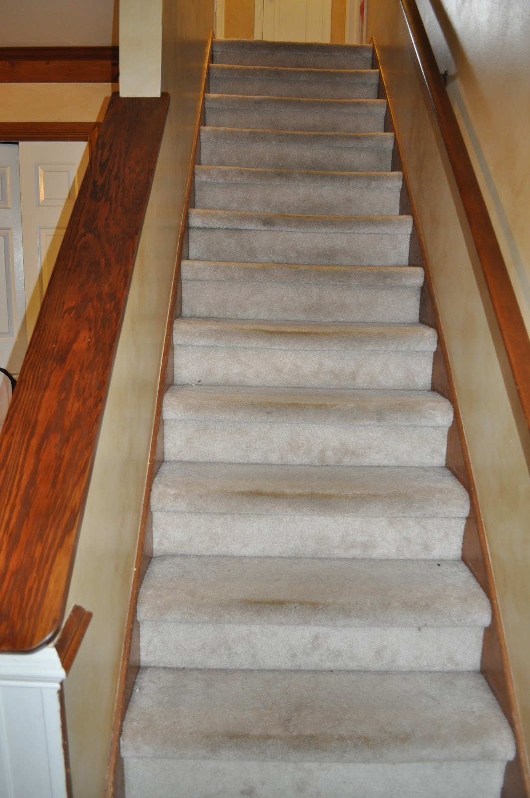 Carpet On Stairs Slippery Make Your Own Carpet Stair Treads Regarding Bullnose Stair Tread Carpets (Image 6 of 15)