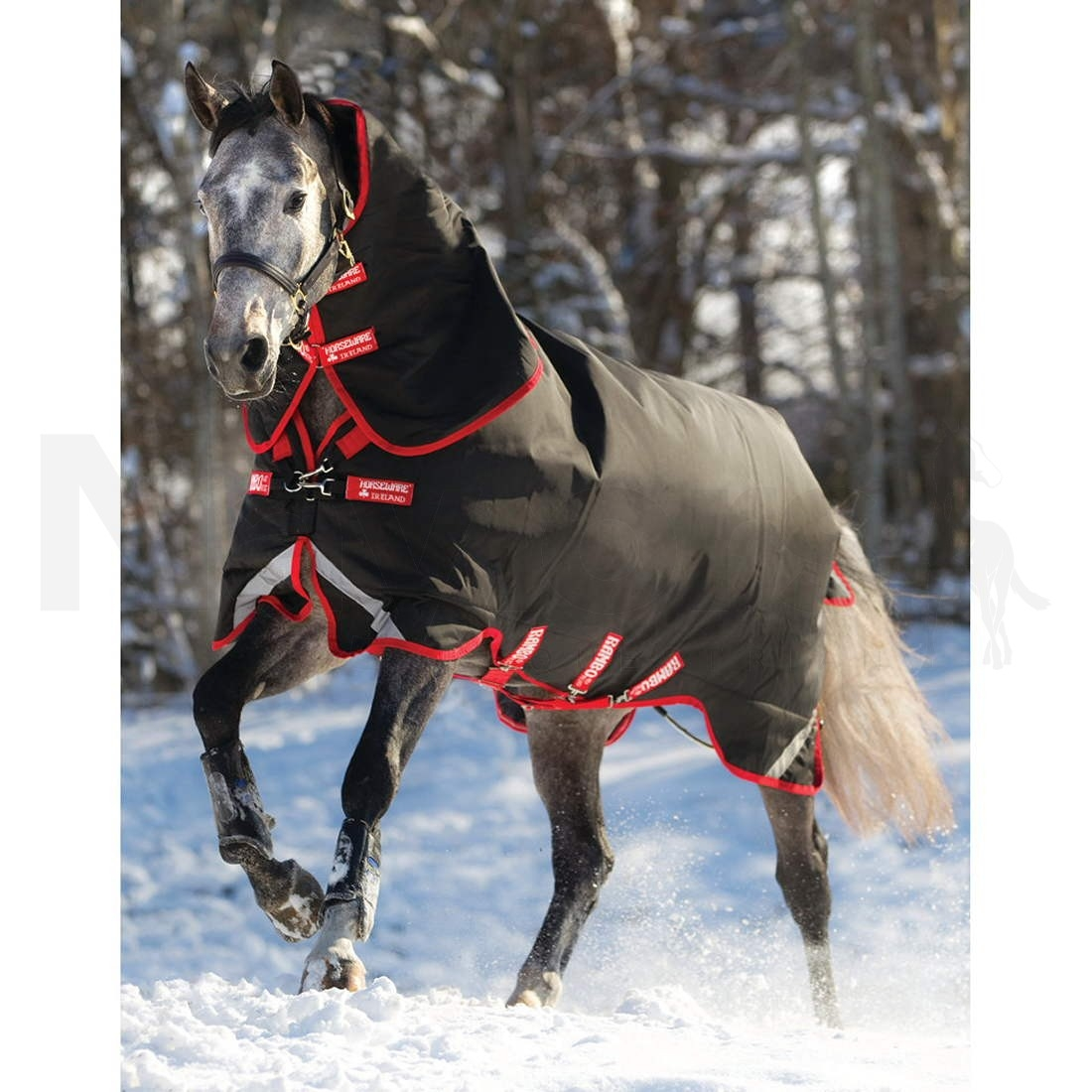 Christmas Horse Rug Home Decors Collection With Regard To Rambo Rugs (Image 3 of 15)