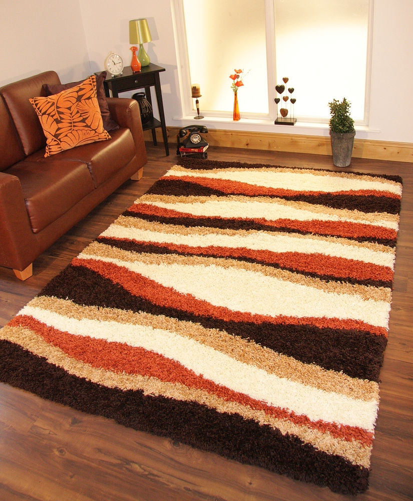 Details About Shaggy Rug Thick Soft Warm Terracotta Burnt Orange With Regard To Brown Orange Rugs (Image 10 of 15)