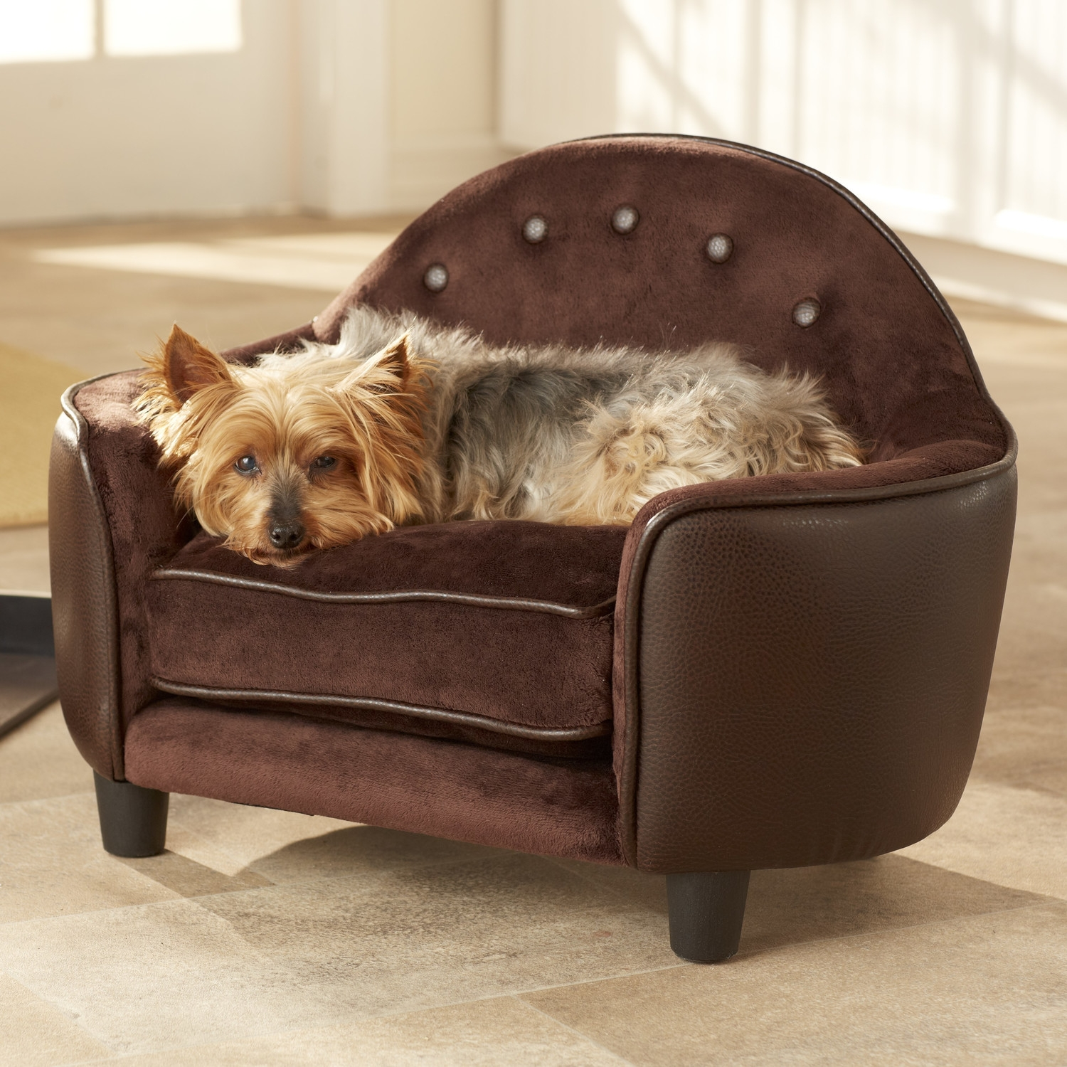 Featured Image of Dog Sofas And Chairs