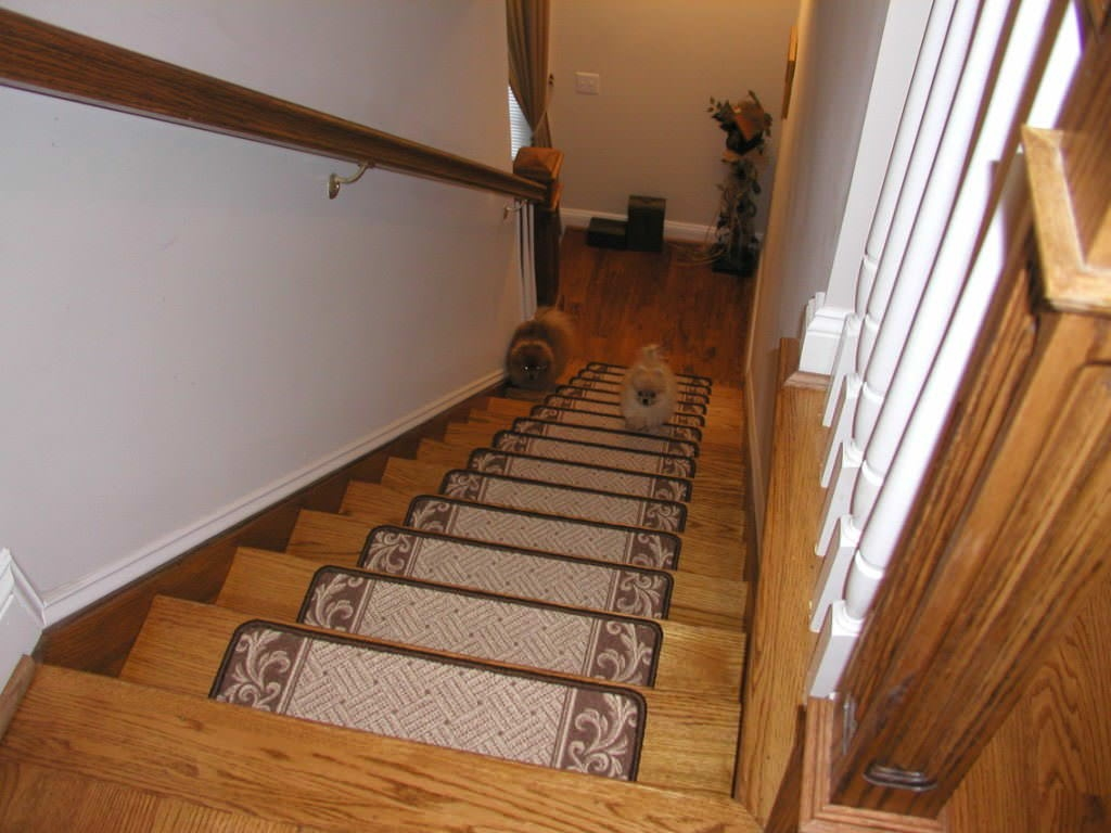Entry Mudroom Wondrous Carpet Stair Treads With Classic Colors Intended For Carpet Strips For Stairs (Image 4 of 15)