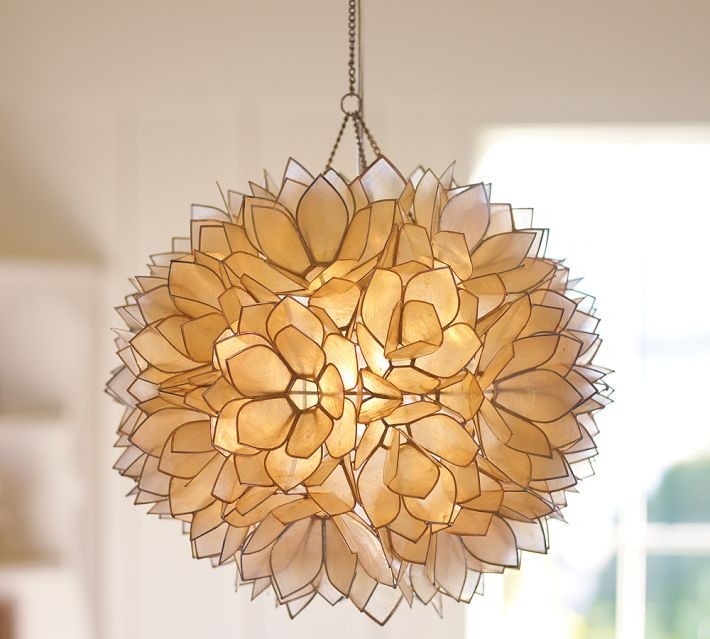 Fantastic Elite Shell Light Shades Pendants With 116 Best Light Up Images On Pinterest (View 13 of 25)