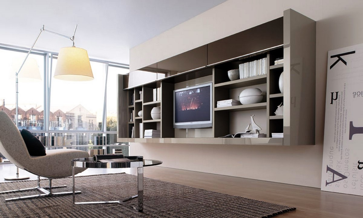 Furniture Living Room Bookcase Storage Cabinet As Room Divider With Regard To Tv Cabinet And Bookcase (Image 9 of 15)