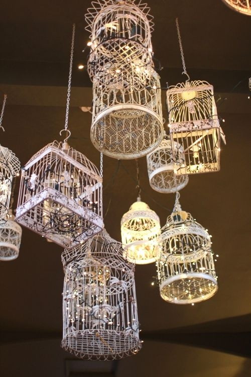 Great Premium Birdcage Pendant Lights With Best 25 Birdcage Light Ideas Only On Pinterest Birdcage (Image 14 of 25)