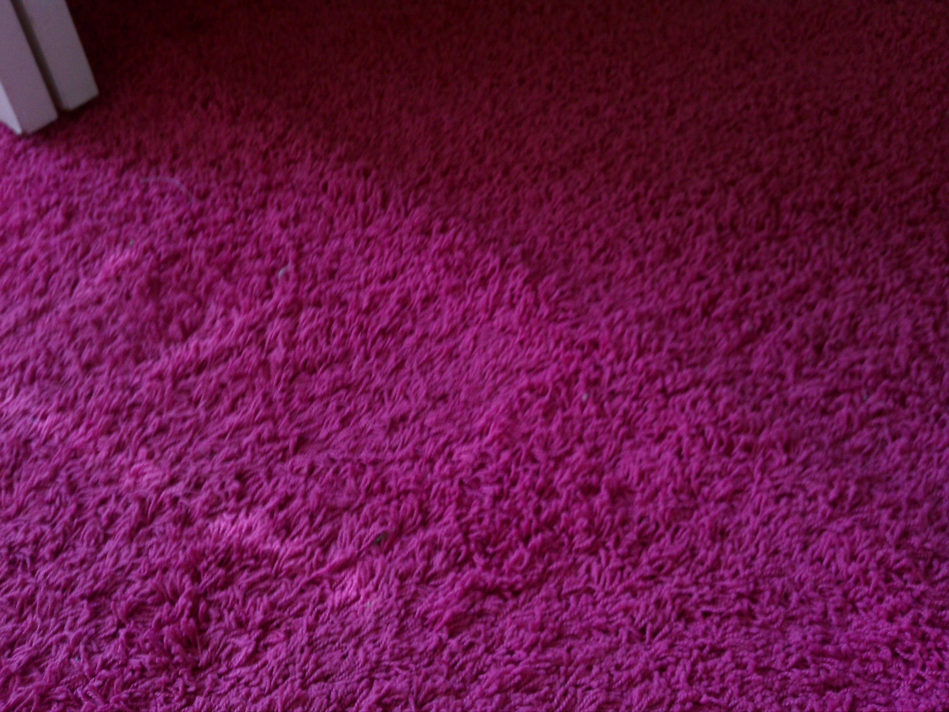 Hot Pink Carpet This Is Beautiful Carpet Pinterest With Fuschia Pink Carpets (Image 8 of 15)