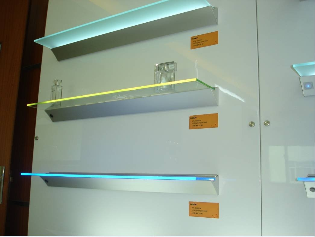 Oec Led Shelf Light Pertaining To Glass Shelves With Lights (Image 9 of 15)