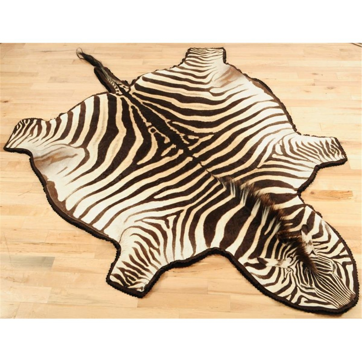 Rugs Unique Interior Rugs Design With Exciting Zebra Skin Rug Intended For Zebra Skin Rugs (Image 9 of 15)