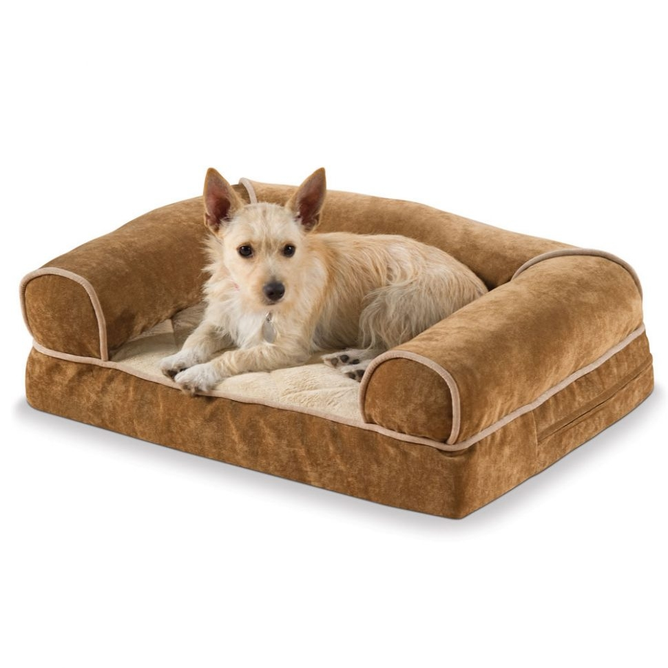Sofas Center 83896 Pt3 Ac Sl1500 V1495833045 Aspen Pet Sofa For Pertaining To Sofas For Dogs (Image 9 of 15)