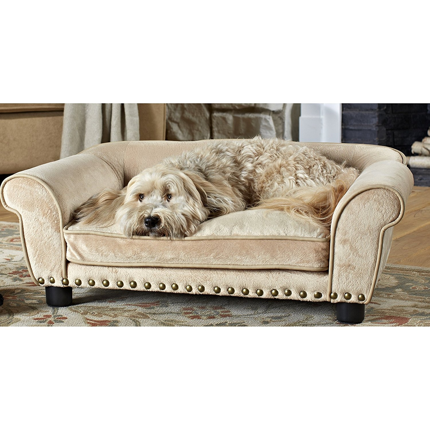Sofas Center Aspen Pet Sofa For Dogs Cats Color Varies Chewy Com Intended For Sofas For Dogs (Image 10 of 15)