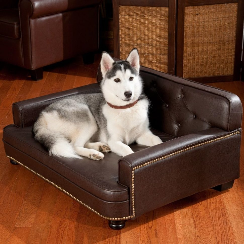 Sofas Center Aspen Pet Sofa For Dogs Cats Color Varies Chewy Com With Sofas For Dogs (Image 11 of 15)