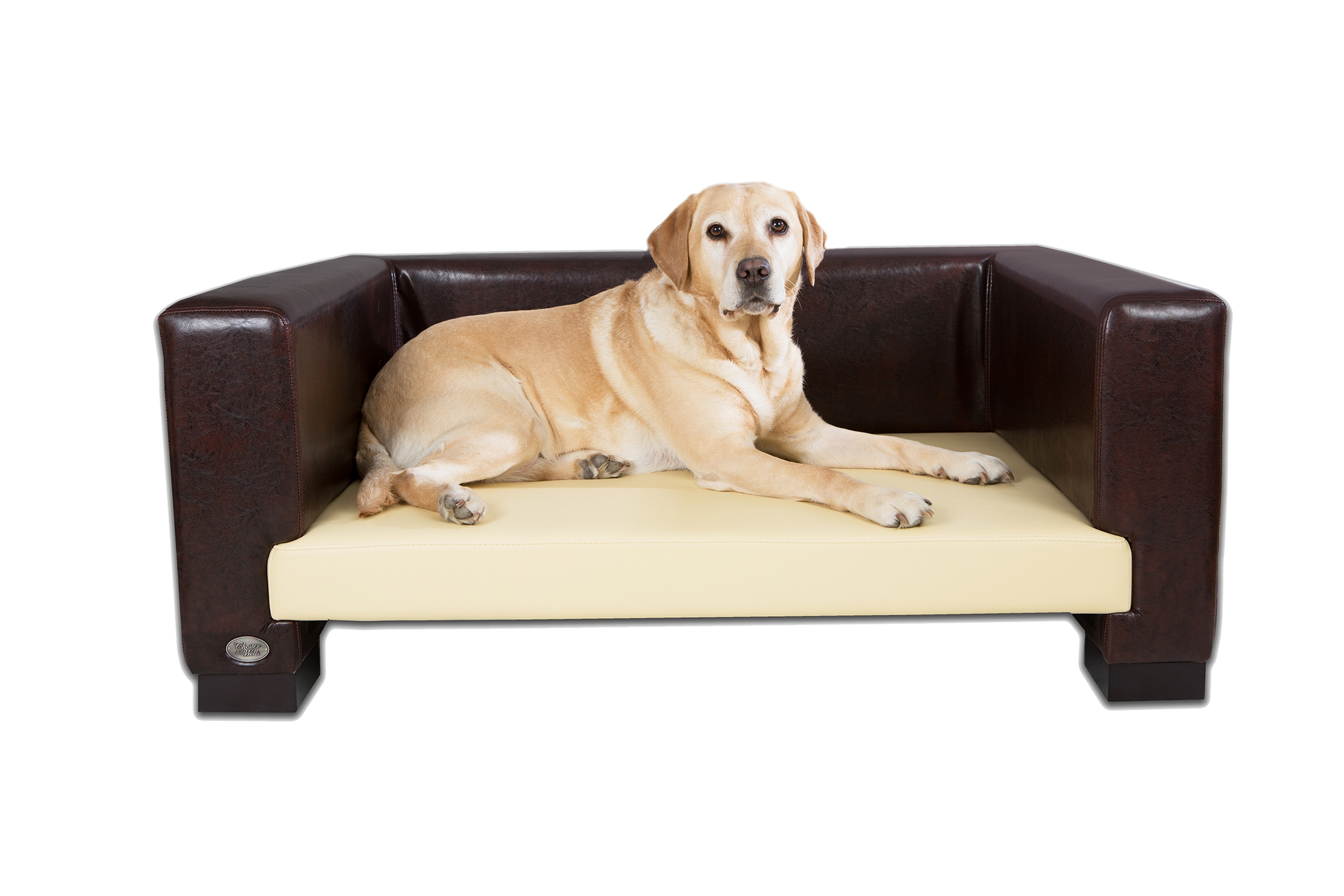 straps furniture pet ultimate protectors cover with p sofa cupboard dog
