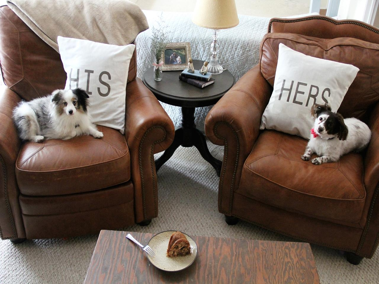 Tips For A Pet Friendly Home Hgtv With Regard To Dog Sofas And Chairs (Image 13 of 15)