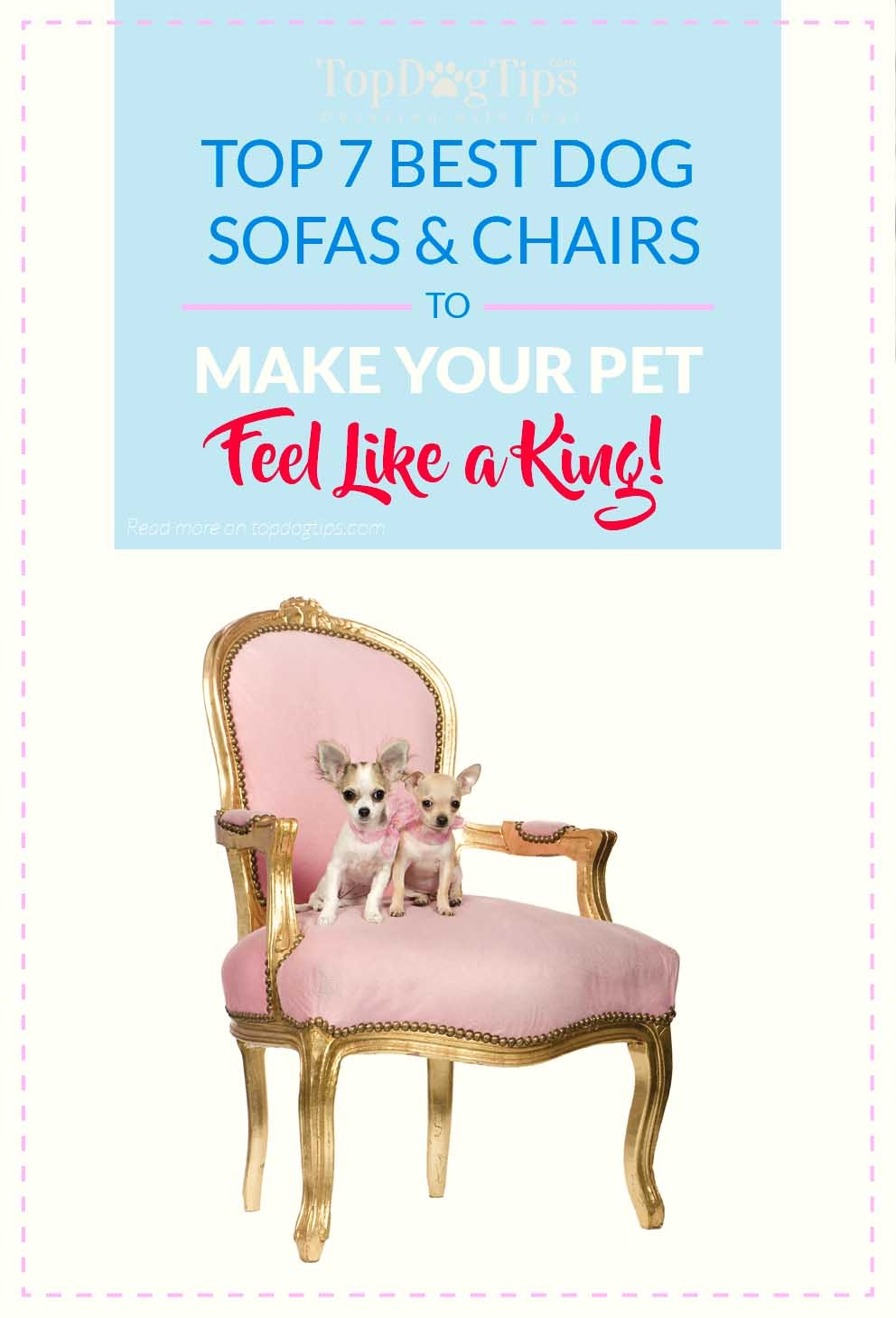 Top 7 Best Dog Sofas And Chairs For Stylish Home Decor In 2017 Throughout Dog Sofas And Chairs (Image 15 of 15)