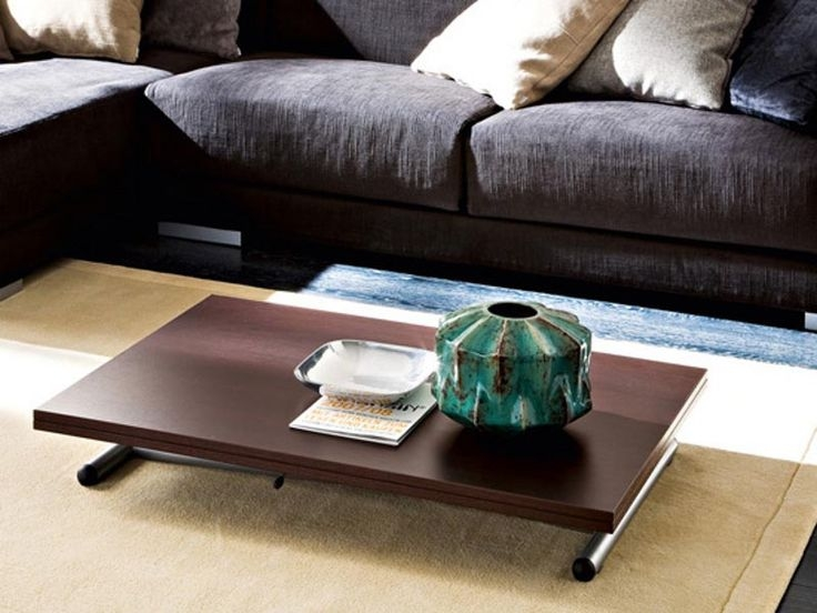 Amazing New Low Coffee Tables Intended For 1227 Best Coffee Tables Images On Pinterest (Image 3 of 40)