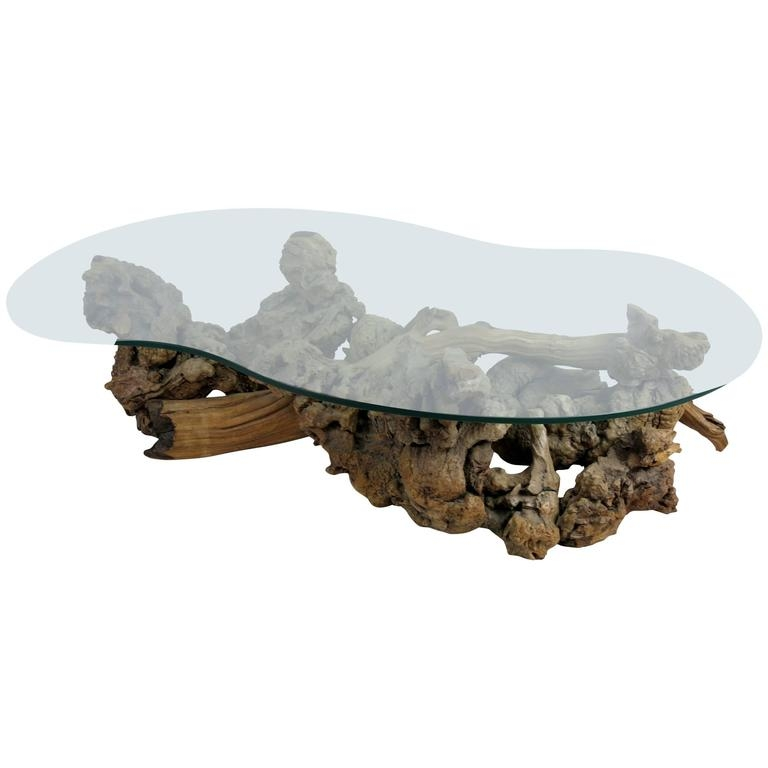 Amazing Wellknown Free Form Coffee Tables With Regard To Large Root Burl Driftwood Coffee Table With Free Form Glass Top At (Image 5 of 40)