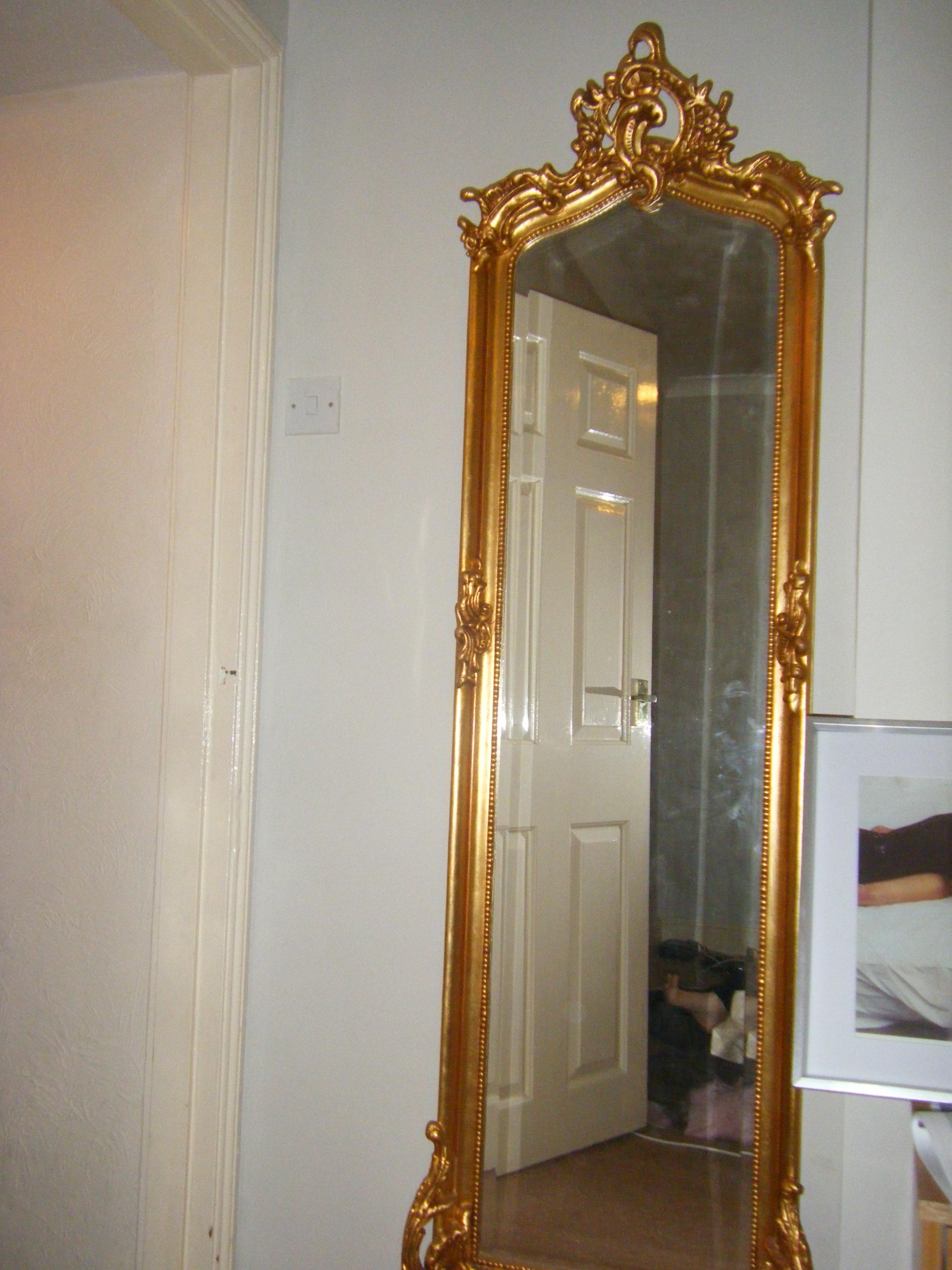 Floor length mirrors rectangle full length bedroom floor for Cool full length mirror