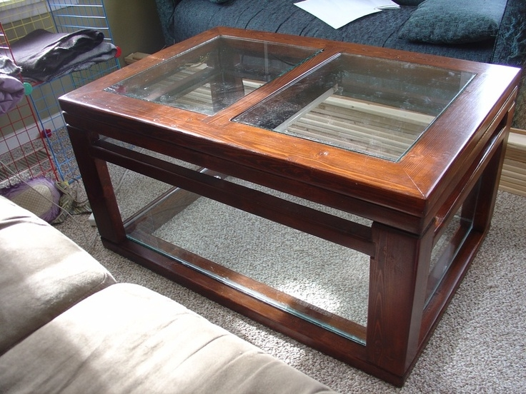 Awesome High Quality Dragon Coffee Tables With Regard To 118 Best Bearded Dragons Images On Pinterest Bearded Dragon (Image 9 of 50)
