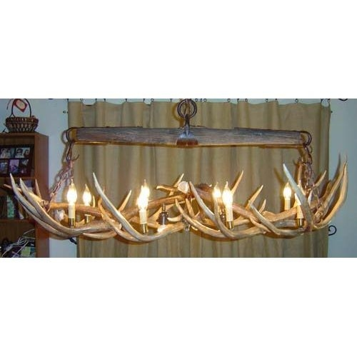 Best 20 Antler Lights Ideas On Pinterest Deer Antler Crafts Intended For Turquoise Antler Chandeliers (Image 13 of 25)