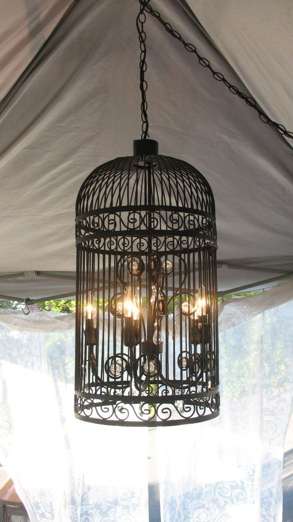 Best 25 Birdcage Light Ideas Only On Pinterest Birdcage With Turquoise Birdcage Chandeliers (View 19 of 25)