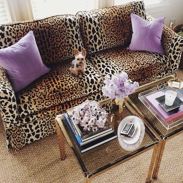 Best 25+ Leopard Living Rooms Ideas On Pinterest | Gold Home Decor Inside Animal Print Sofas (Image 10 of 20)