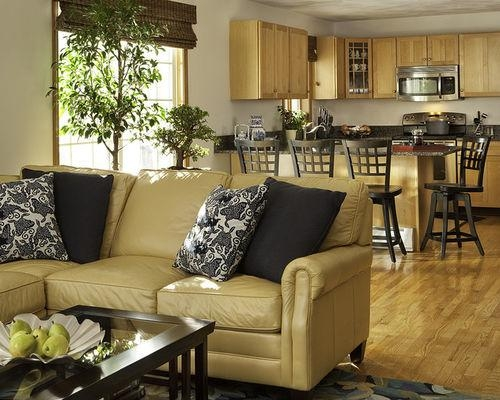 Caramel Leather Sofa Set | Houzz Within Carmel Leather Sofas (Image 9 of 20)