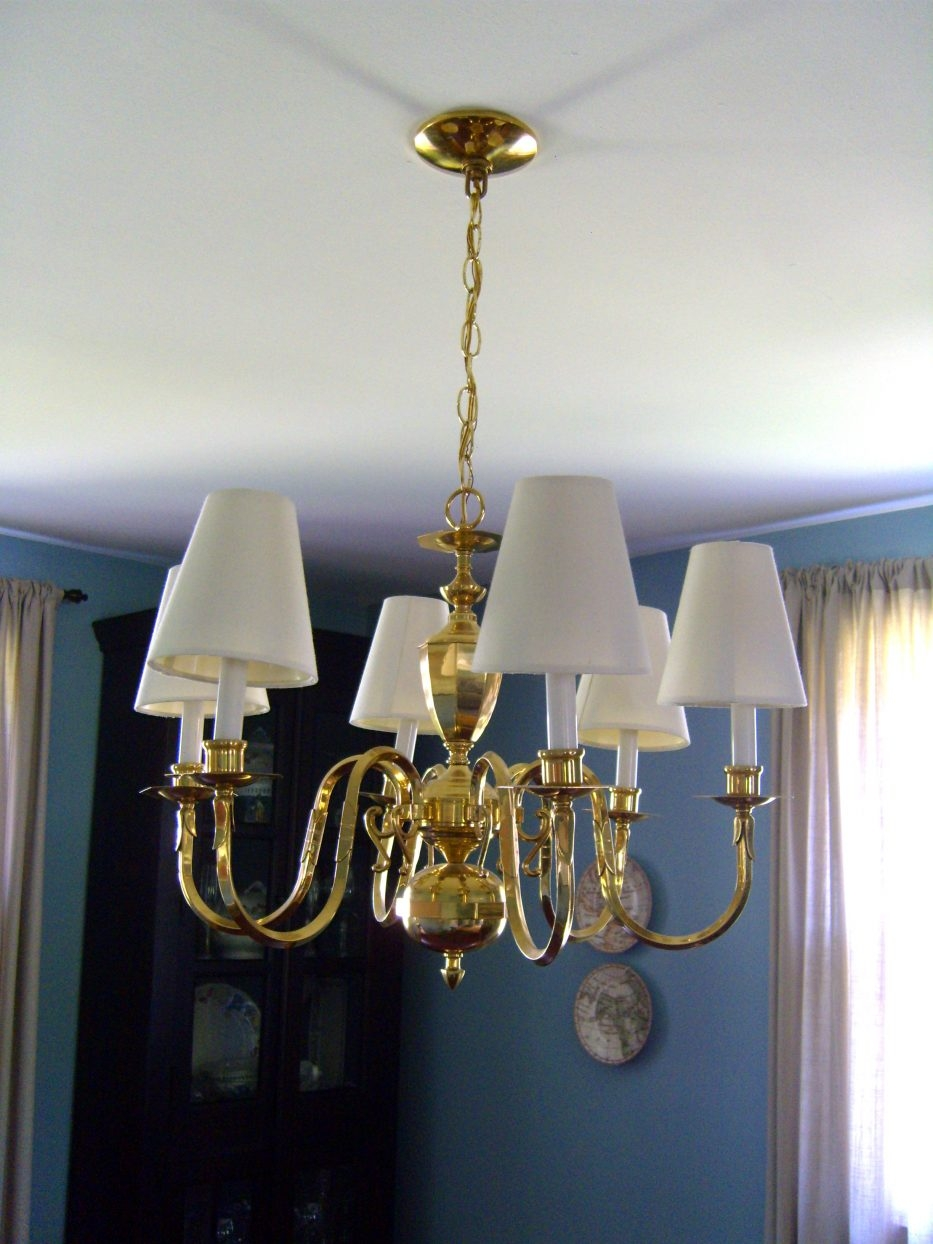 Chandelier Literarywondrous Mini Chandelier Lamp Shades Pictures With Regard To Chandelier Lamp Shades (Image 10 of 25)