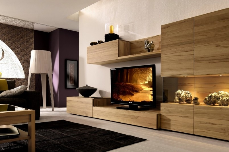 Excellent Best Enclosed TV Cabinets With Doors For Living Room Storage Cabinets With Doors Living Room Storage (Image 13 of 50)