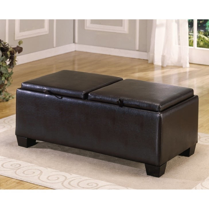 Excellent Elite Brown Leather Ottoman Coffee Tables Throughout Square Leather Storage Ottoman Coffee Table (View 18 of 50)