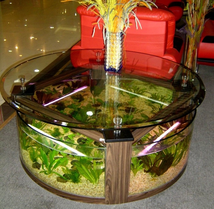 Excellent Latest Half Circle Coffee Tables Pertaining To Half Circle Aquarium Coffee Table (View 33 of 40)