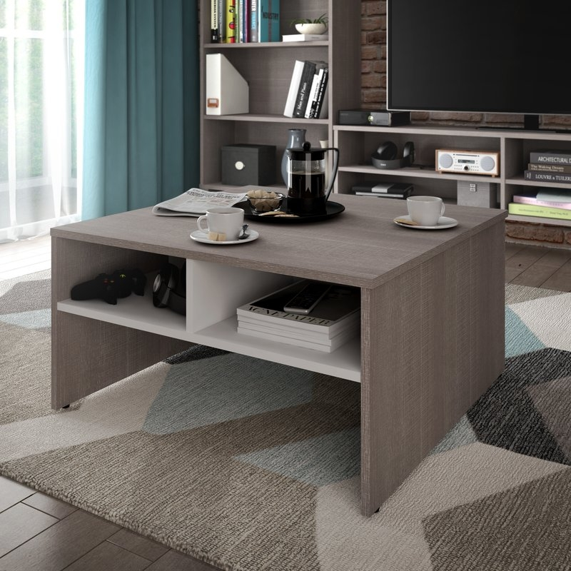 Excellent Popular Coffee Tables With Magazine Storage Throughout Latitude Run Frederick Storage Coffee Table With Magazine Rack (Image 12 of 50)